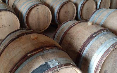 Soutenez les champagnes Bio de vignerons